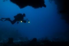 Skymningsdyk i Röda Havet