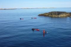 Dykare i ytan